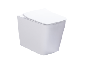 H045B Washdown Wall-hung Toilet